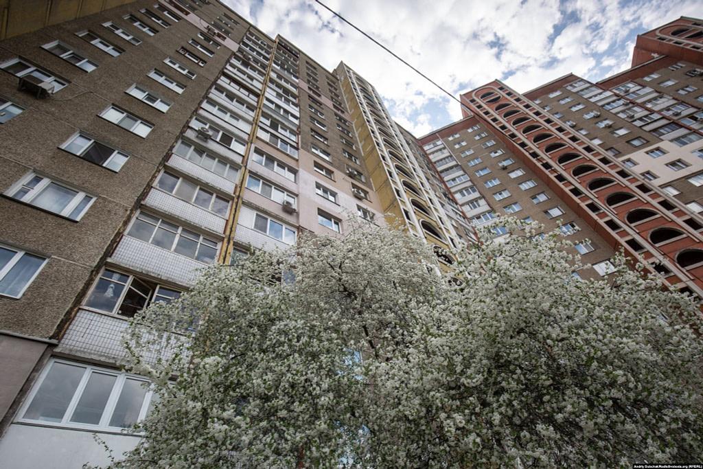 Квіт вишні під однією з багатоповерхівок масиву. Фото - Андрій Дубчак